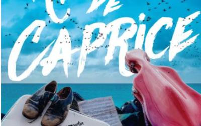 Concert 'Reis met de Caprice' in Martinikerk op 6 juni om 16.00 uur